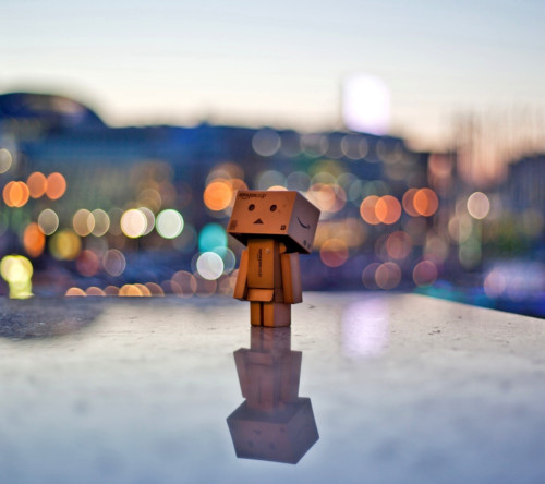 Danbo In The City