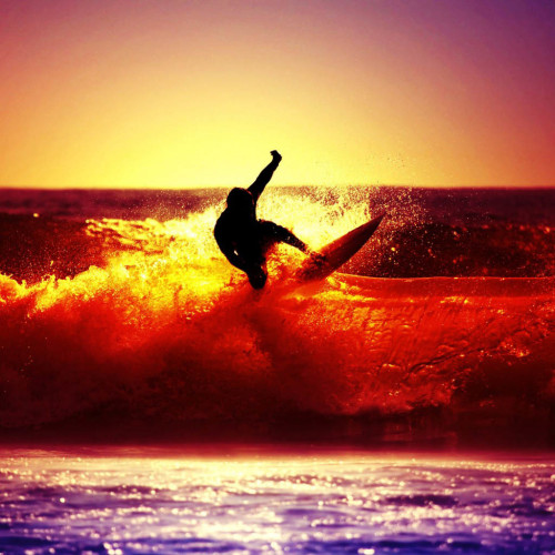 Freestyle surfer