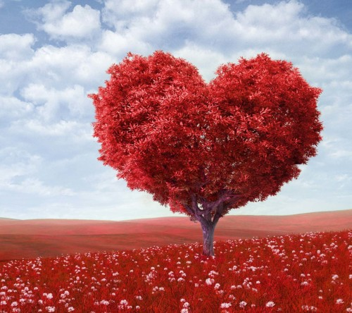 Love Tree Red